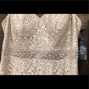 Alex Evenings Dresses - Formal Jacket Dress Plus Size 14W 2pc Evening Gown